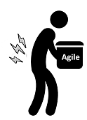 Inadequate Experience with Agile